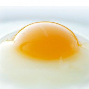 高知が誇る南国育ち 土佐ジローの卵