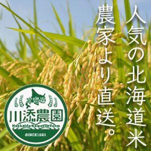 人気の北海道米農家より直送