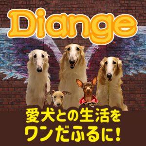 愛犬との生活をワンだふるに!Diange
