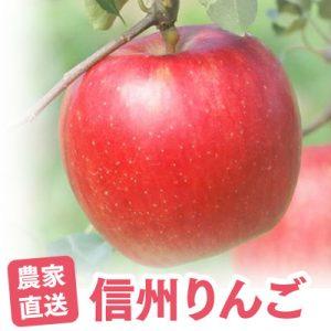 とれたてサクッ♪あ〜うまい!農家直送「信州りんご」
